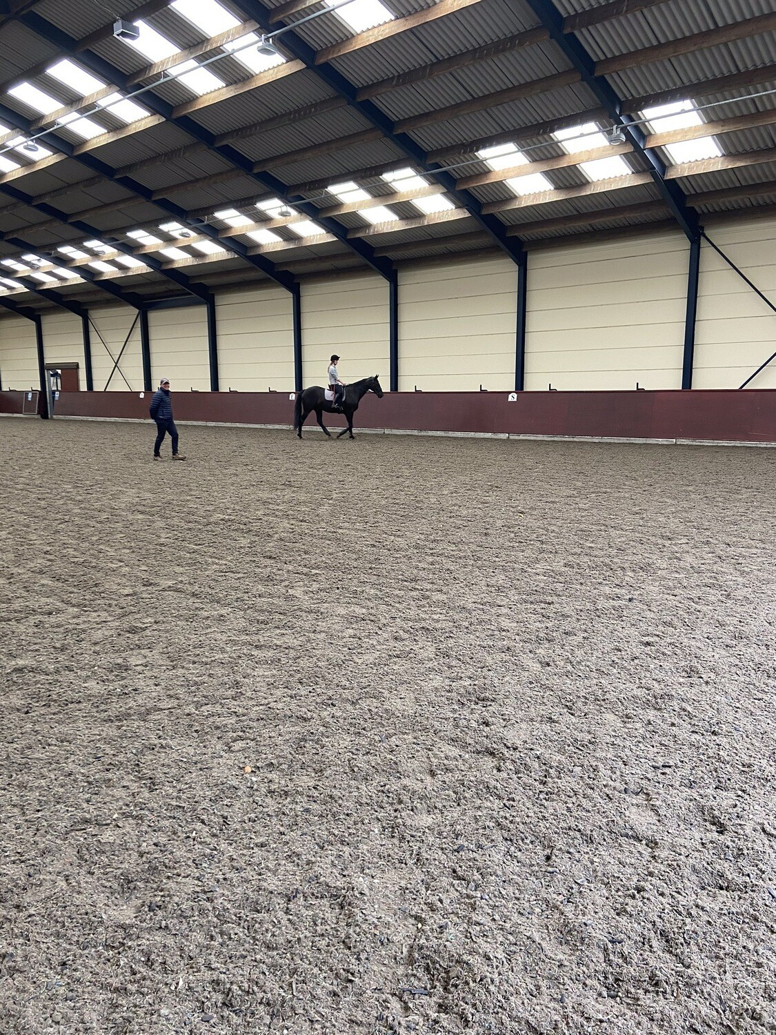 Testt: Mounted Review : 30 Minutes (Client Must Have Had A Previous Assessment With Andy) October 29th Hosted By Kerri Thompson, Newbury Stud - Must Be On Host's List Before Use