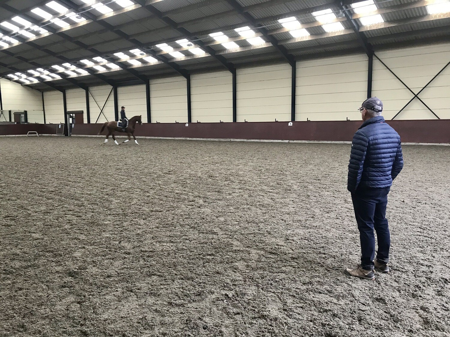 Testt: Mounted Symmetry Assessment: 60 Minutes October 29th : Hosted By Kerri Thompson, Newbury Stud (Please Do Not Use Booking Link Unless On Host's List)