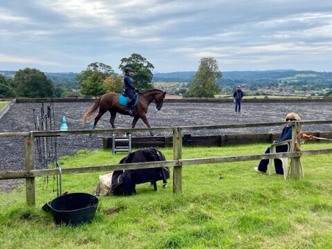 Testt : Mounted Follow Up Review : 30 Minutes (Must Have Had A Previous Assessment With Andy) : Nov 21st : Hosted By Sophie Cox : Wassell Wood Farm, Worcs - Price Includes Arena Fee