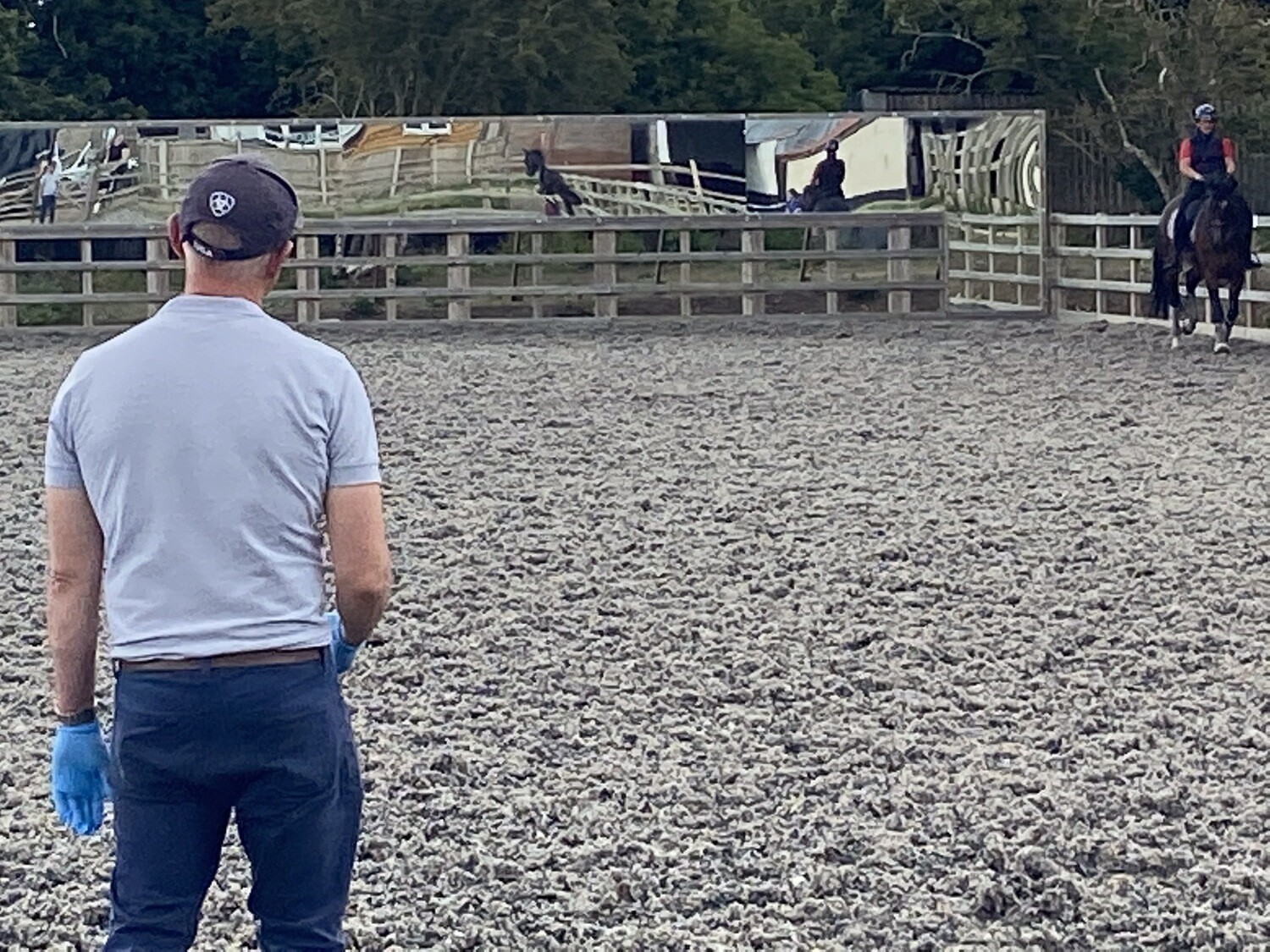 Testt Rider Symmetry Mounted Follow Up Assessment : 30 Minutes : Hosted By Louisa Cuomo At Deepdene Stabes, Kent : 28th September 2020 (Client Must Have Had A Previous Assessment With Andy)