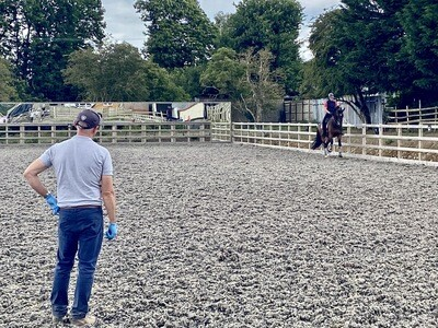Testt: Mounted Symmetry Assessment: 60 Minutes : December 14th Hosted By Chelsea Donovan At Deepdene Stables ( £10 Arena Fee Payable On The Day To Host)