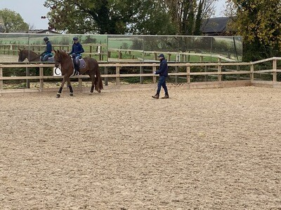 Testt : Rider Symmetry Assessment: 60 Minutes : December 16th : Hosted By Michael Whippey At Idstone Farm Stables (Please Do Not Use Payment Link Unless On Mike's List)