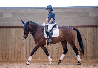 Testt®️Mounted Symmetry Assessment: 60 Minutes : June 26th : Hosted By Jane Critchley At Denstone Stud (Please Do Not Use Link Unless On Jane's List As Clinic May Be Full)