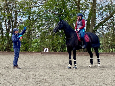 Testt®️Mounted Follow Up Review 30 Minutes : September 25th Hosted By Jackie Wright At Tyddyn Farm (Client Must Have Had A Previous Assessment With Andy To Use This Link)