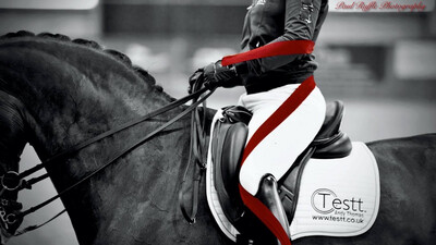 Testt®️Mounted Symmetry Assessment : September 8th : Hosted By Hannah Biggs (Please Do Not Use Link Unless On Hannah's List As Clinic May Be Full)