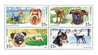 РФ. Декоративные породы собак. Сцепка из 4 марок