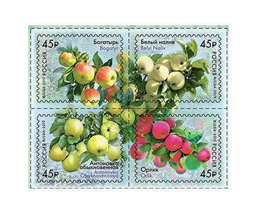 РФ. Флора России. Сорта яблони. Сцепка из 4 самоклеющихся марок
