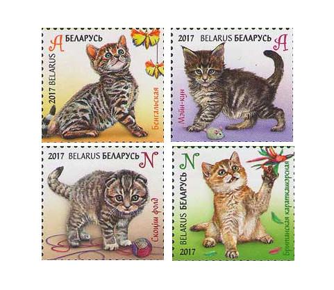 Белоруссия. Детская филателия. Котята. Серия из 4 марок