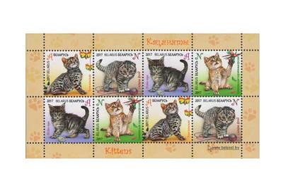 Белоруссия. Детская филателия. Котята. Почтовый блок из 2 сцепок по 4 марки