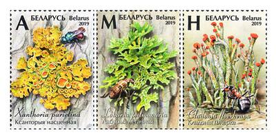 Белоруссия. Лишайники. Серия из 3 марок