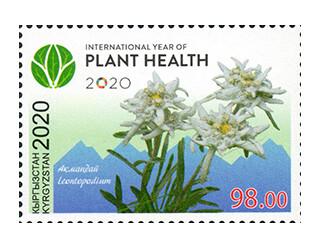 Киргизия. 2020 год- Международный год охраны растений под эгидой ООН. Марка