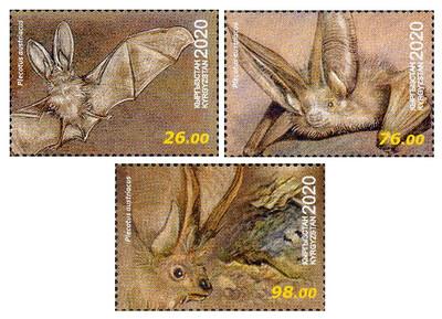 Киргизия. Фауна. Летучие мыши. Серый ушан. Серия из 3 марок