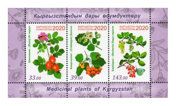 Киргизия. Флора. Лекарственные растения: шиповник, боярышник и барбарис. Почтовый блок из 3 марок