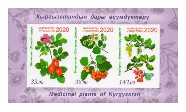 Киргизия. Флора. Лекарственные растения: шиповник, боярышник и барбарис. Почтовый блок из 3 беззубцовых марок