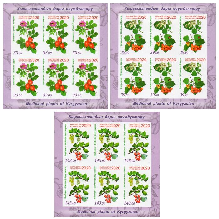 Киргизия. Флора. Лекарственные растения: шиповник, боярышник и барбарис. Серия из 3 листов по 6 беззубцовых марок