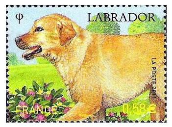 Франция. Собаки. Лабрадор. Марка