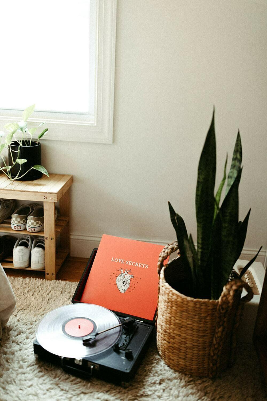 Love Secrets Vinyl