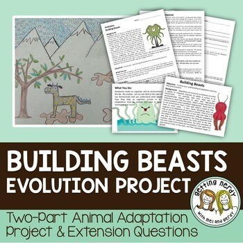 Adaptations of Animals Project for Evolution