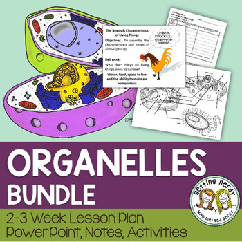 Cell Organelles Structure & Function - PowerPoint & Handouts - Distance Learning + Digital Lesson