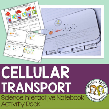 Science Interactive Notebook - Osmosis and Diffusion