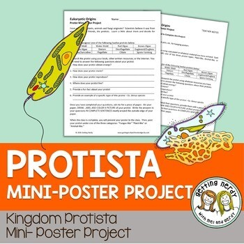 Protist Poster Project