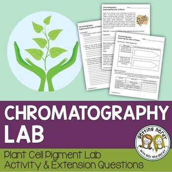 Plant Cell Pigment Chromatography Lab