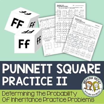 Punnett Square Practice II