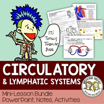 Circulatory & Lymphatic Systems PowerPoint & Notes