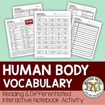 Human Body - Differentiated Vocabulary