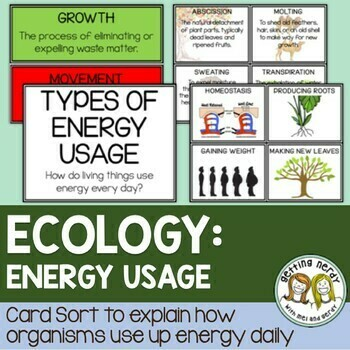 Ecology - Energy Usage Card Sort Activity