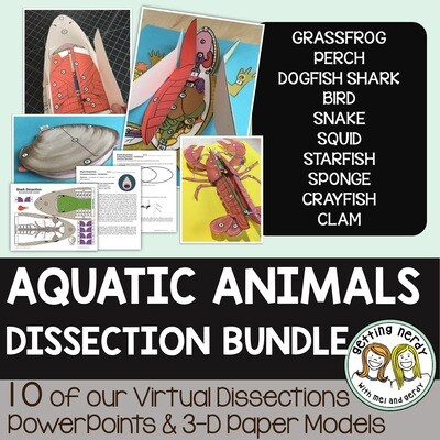 Dissection Models - Aquatic Animals Bundle