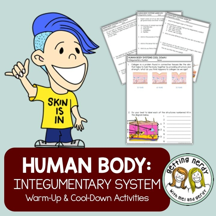 Integumentary System Human Body Warm-Up Cool-Down - Distance Learning Digital Lesson