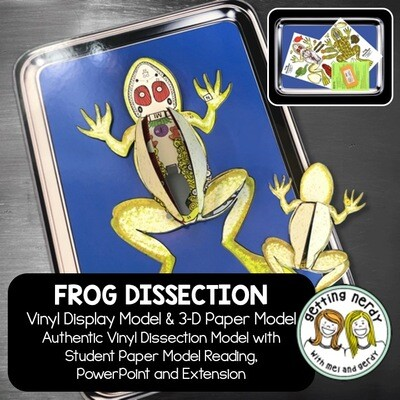 Frog Vinyl Dissection - Scienstructable 3D Dissection Model