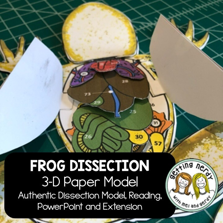 Frog Paper Dissection - Scienstructable 3D Dissection Model - Distance Learning + Digital Lesson