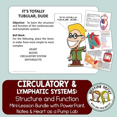 Circulatory & Lymphatic Systems PowerPoint & Notes - Human Body Distance Learning + Digital Lesson