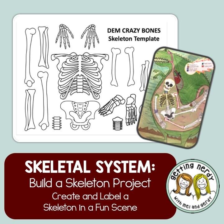 Skeletal System - Skeleton Project Distance Learning + Digital Lesson