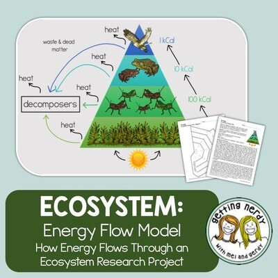 Ecology - Ecosystem Energy Flow Model - Distance Learning + Digital Lesson