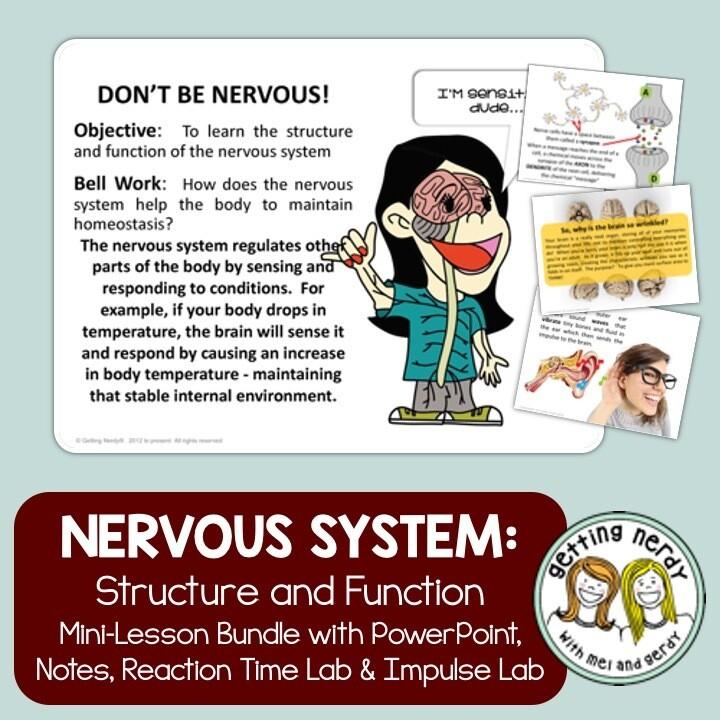 Nervous System - Distance Learning + Digital Lesson