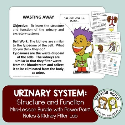Urinary System - Distance Learning + Digital Lesson