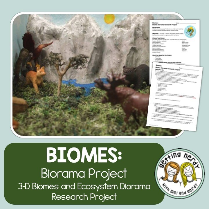 Ecosystem Biome Diorama Project - Distance Learning + Digital Lesson