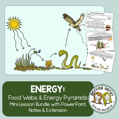 Food Chains Food Webs and Energy Pyramids - Distance Learning + Digital Lesson