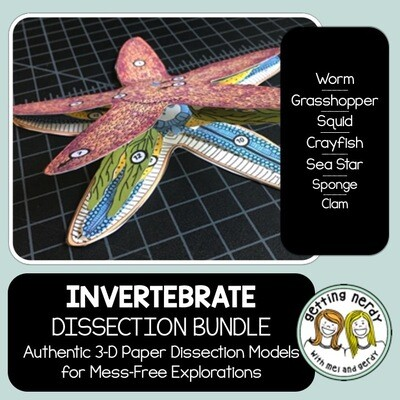 Dissection - Invertebrate Animals Bundle - Distance Learning + Digital Lesson
