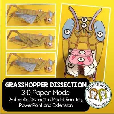 Grasshopper Paper Dissection - Scienstructable 3D Dissection Model - Distance Learning + Digital Lesson