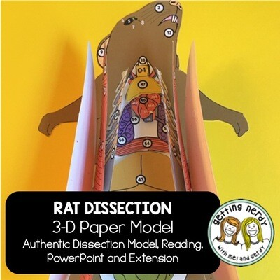 Rat Paper Dissection - Scienstructable 3D Dissection Model - Distance Learning + Digital Lesson