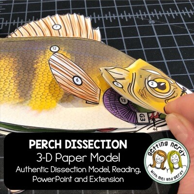 Perch Paper Dissection - Scienstructable 3D Dissection Model - Distance Learning + Digital Lesson