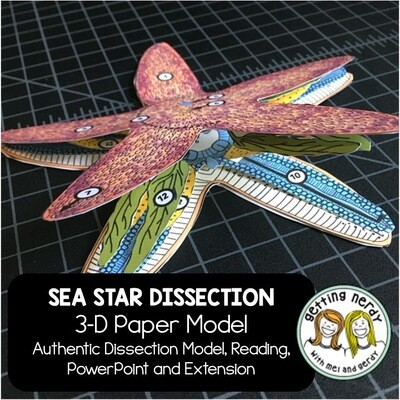 Sea Star Starfish Paper Dissection - Scienstructable 3D Dissection Model - Distance Learning + Digital Lesson