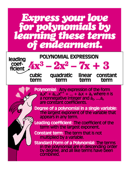 Polynomial Expressions.