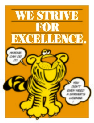 We Strive for Excellence