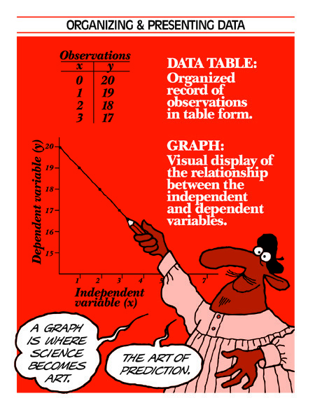 Data Tables vs Graphs