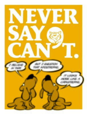 Never Say Can't
